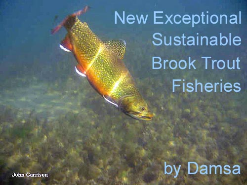 Damsa: New Exceptional Sustainable Brook Trout Fisheries
